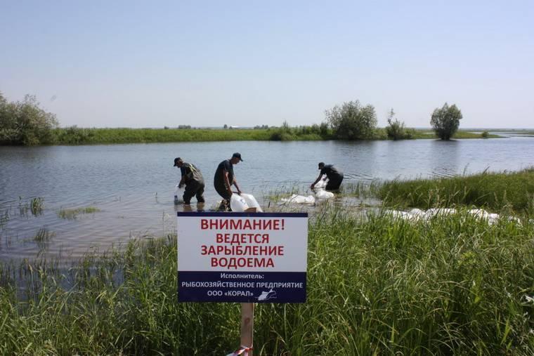 Кто решает допускать на водоём рыбака или нет: огородили высокими заборами — не пройти, не проехать