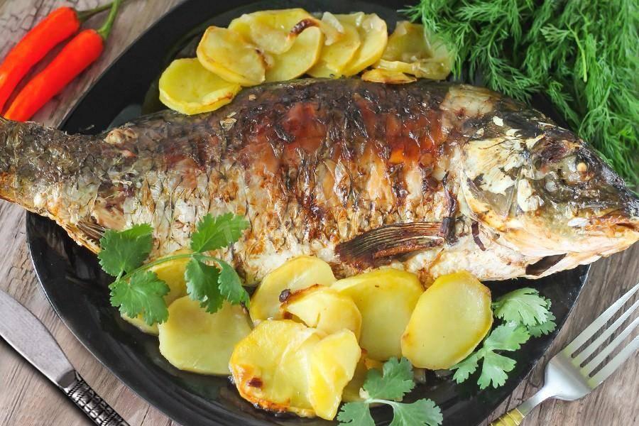 Сазан, запеченный в духовке - вкусные блюда