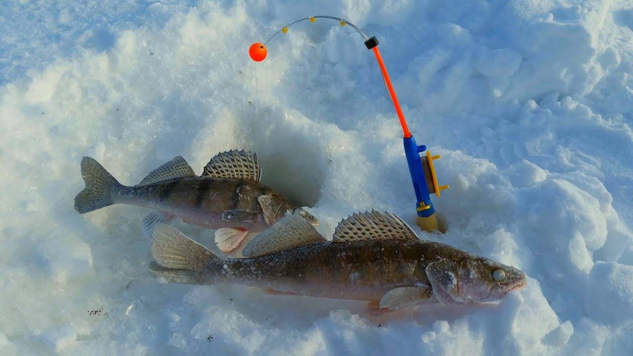 Зимняя рыбалка — википедия. что такое зимняя рыбалка