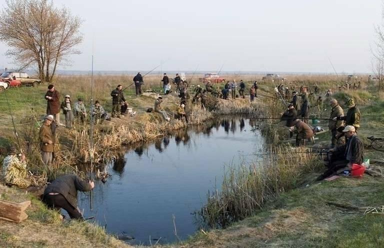 Рыбалка в костанае и костанайской области: места и особенности