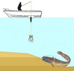 Снасти для ловли сома – практические советы