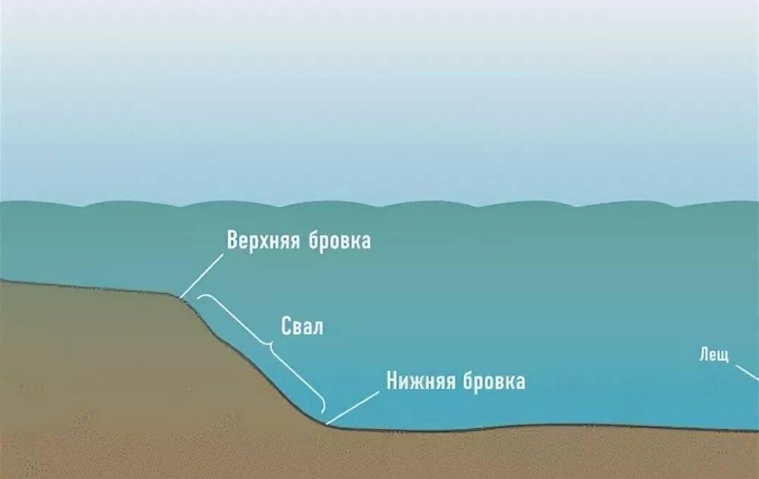 Как найти место, где может стоять рыба