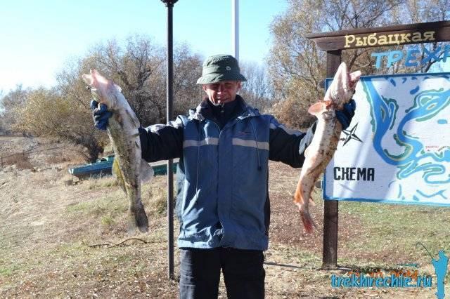 Рыбалка со спиннингом на нижней волге – щука на джиг - рыбалка на ахтубе с комфортом - база трёхречье