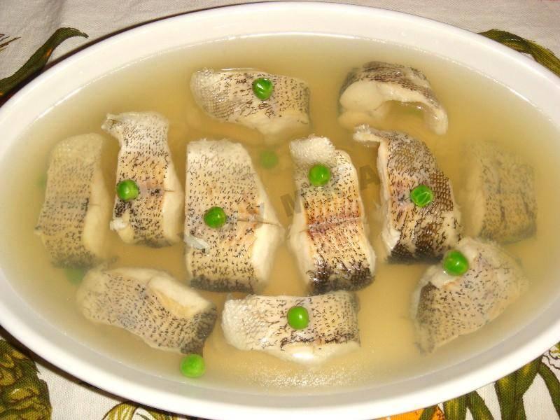 Заливное из судака – 7 пошаговых рецептов приготовления с фото