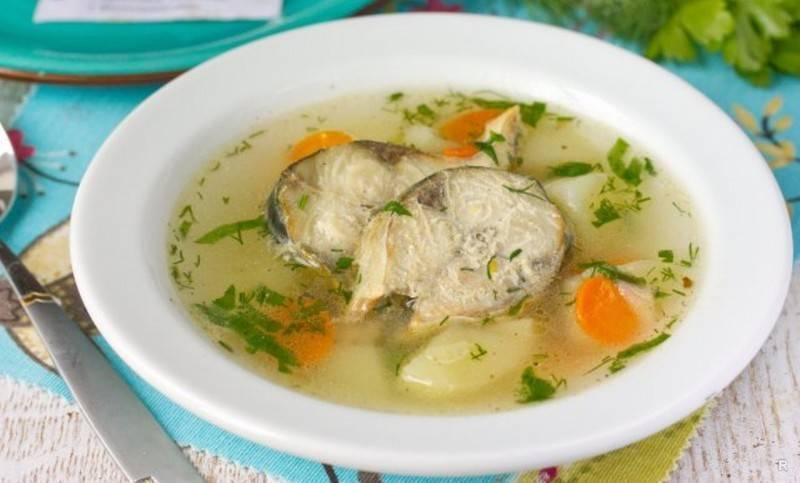 Уха из скумбрии свежемороженой — 7 рецептов, как сварить вкусный рыбный суп - rus-womens