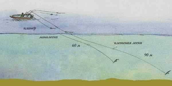 Ловля на спиннинг с берега: как правильно рыбачить, особенности рыбалки на береговые спиннинги