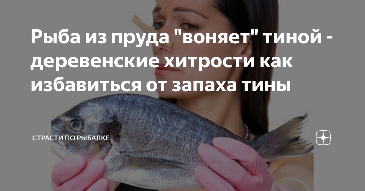 Как избавиться от запаха рыбы: обзор средств и методов