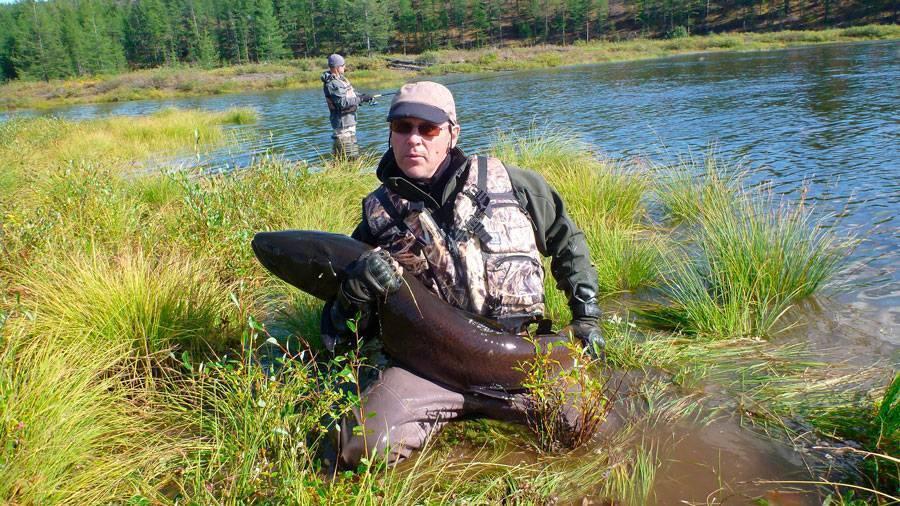 Рыбы сибири и дальнего востока россии: виды рыб, где обитает