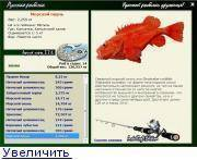 Окунь рыба: как выглядит, где водится, когда жор и нерест речного окуня