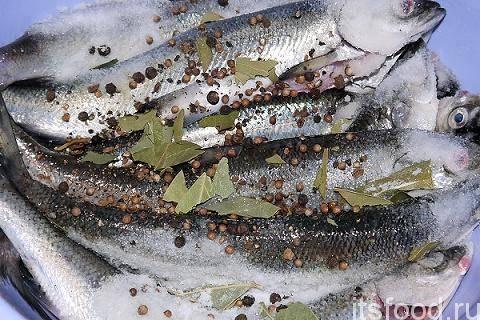 Копченая рыба (38 рецептов с фото) - рецепты с фотографиями на поварёнок.ру