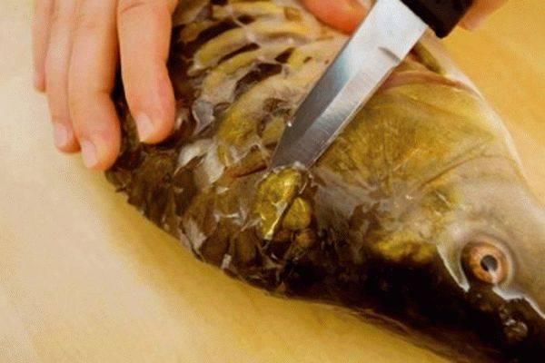 Как почистить карпа от костей