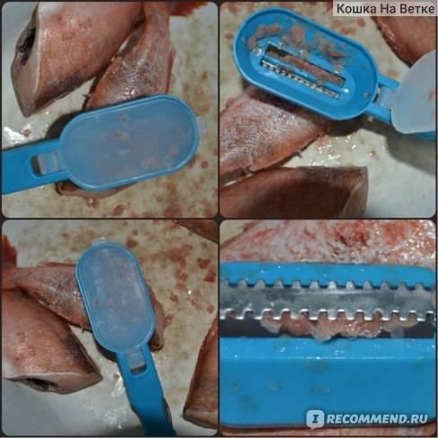 ✅ чистилка для рыбы: ручная, электрическая, делаем своими руками - fishyarm.ru