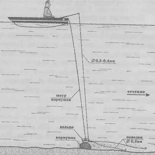 Ловля леща на кольцо с лодки: монтаж и изготовление