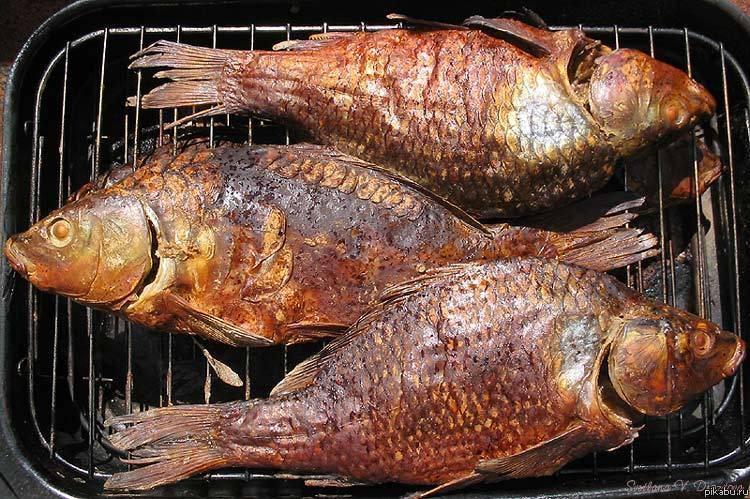 Рецепты с копченой рыбой, 51 рецепт, фото-рецепты / готовим.ру