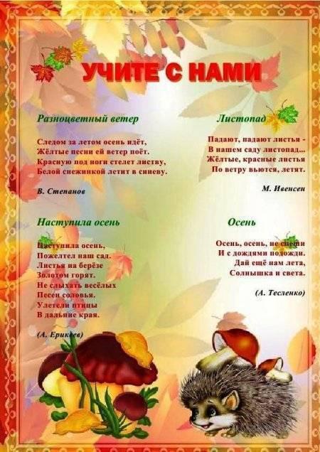 Стихи про осень для детей 5 лет | детские стихи