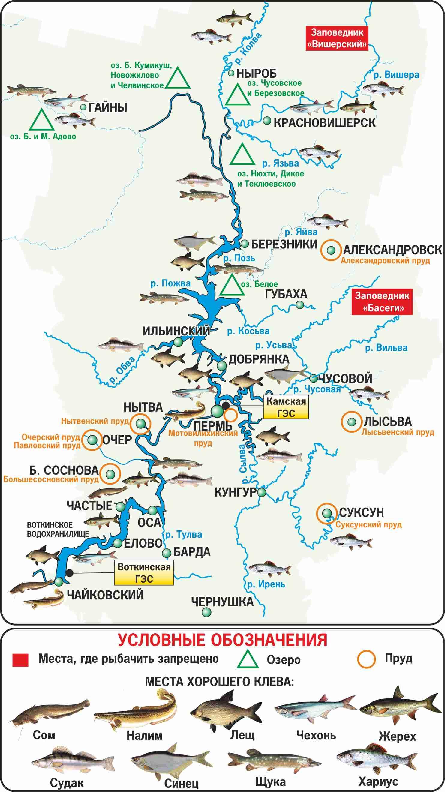 Озернинское водохранилище: рыбалка и отдых на вдхр, какая рыба водится, какие места можно назвать рыбными