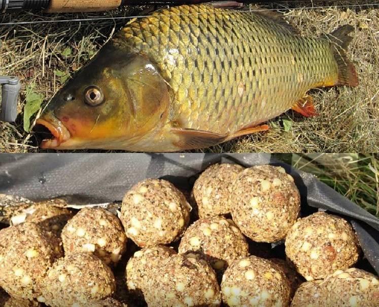 Лучшее тесто для рыбалки: я готовлю только по своему рецепту - ни разу не уходил без улова