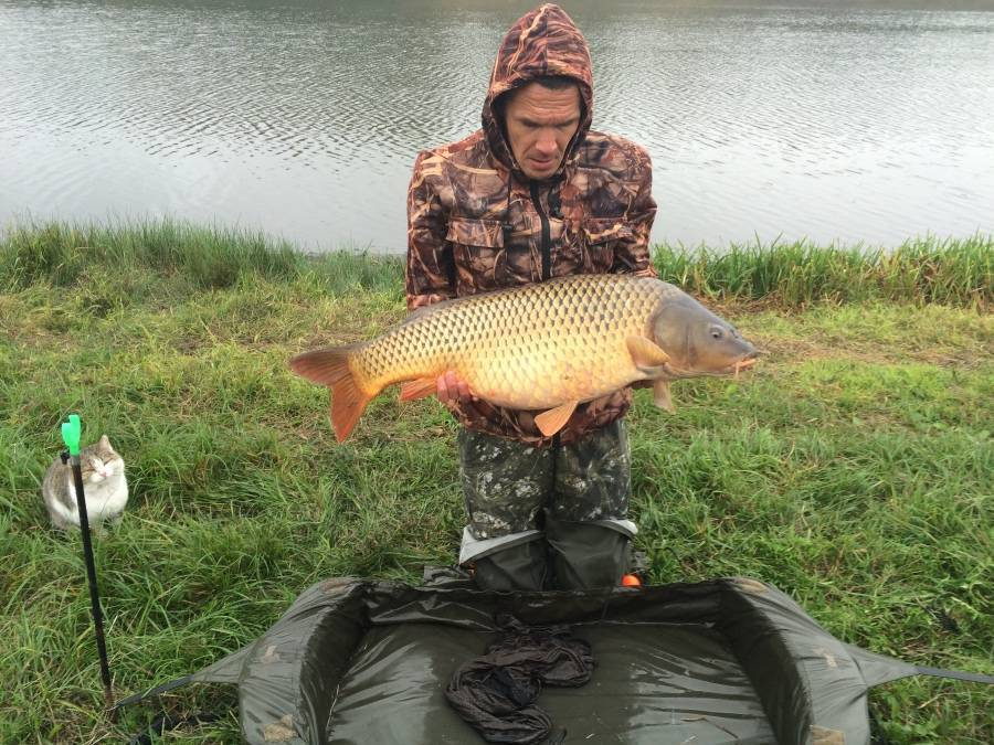 Рыбалка в ульяновской области