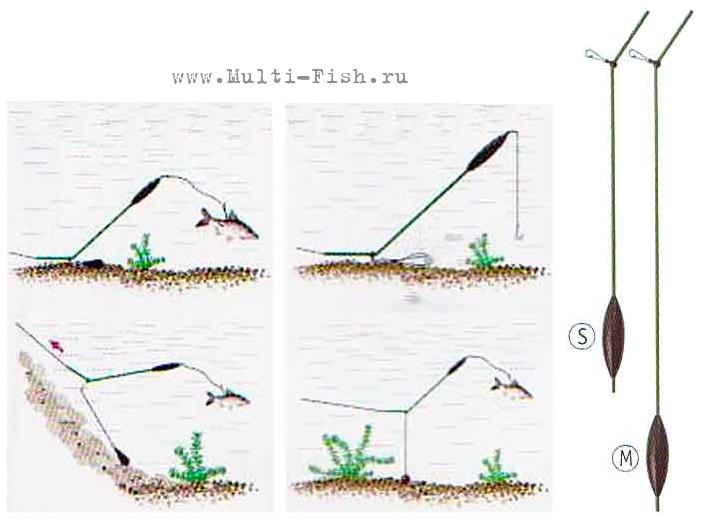 Как ловить жереха - видео, где ловить на спиннинг, оснастка и способы ловли