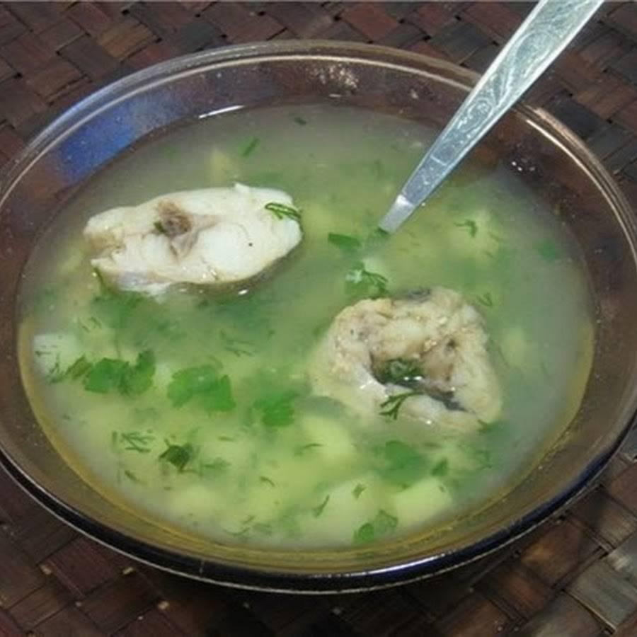 Как приготовить рыбный суп: лучший классический рецепт