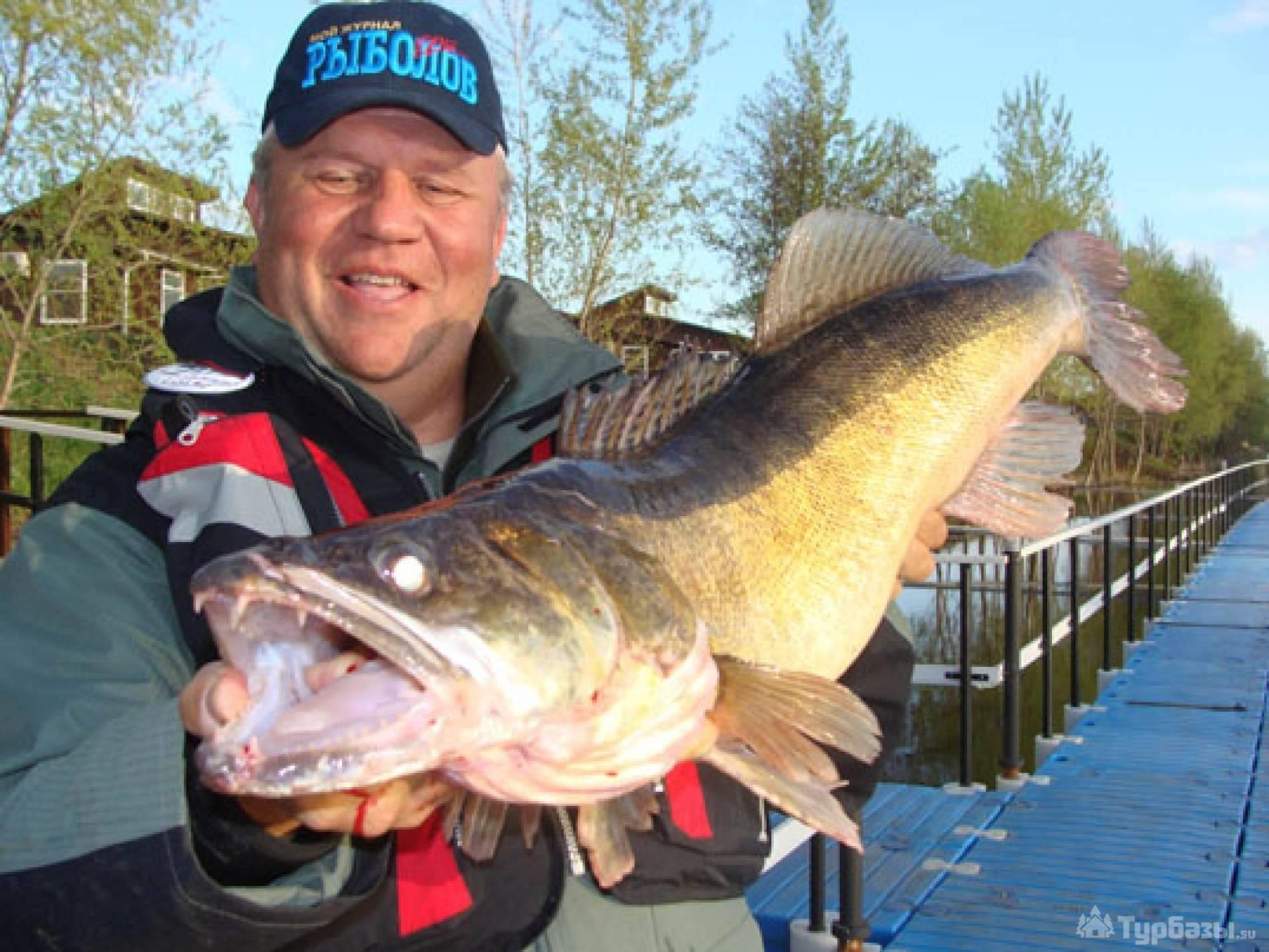 Рыбалка в самарской области: платная и бесплатная, обзор водоемов
