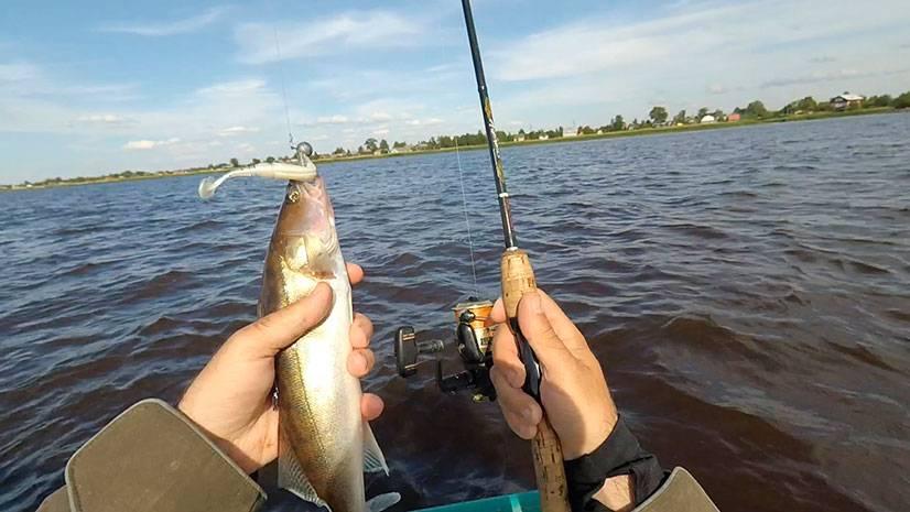 Рыбалка на озере ильмень: отзывы, какая рыба водится, лучшие места для ловли