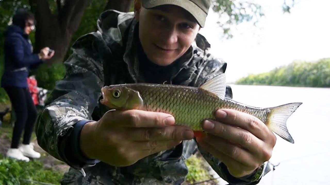 Все о рыбалке в воронеже и воронежской области
