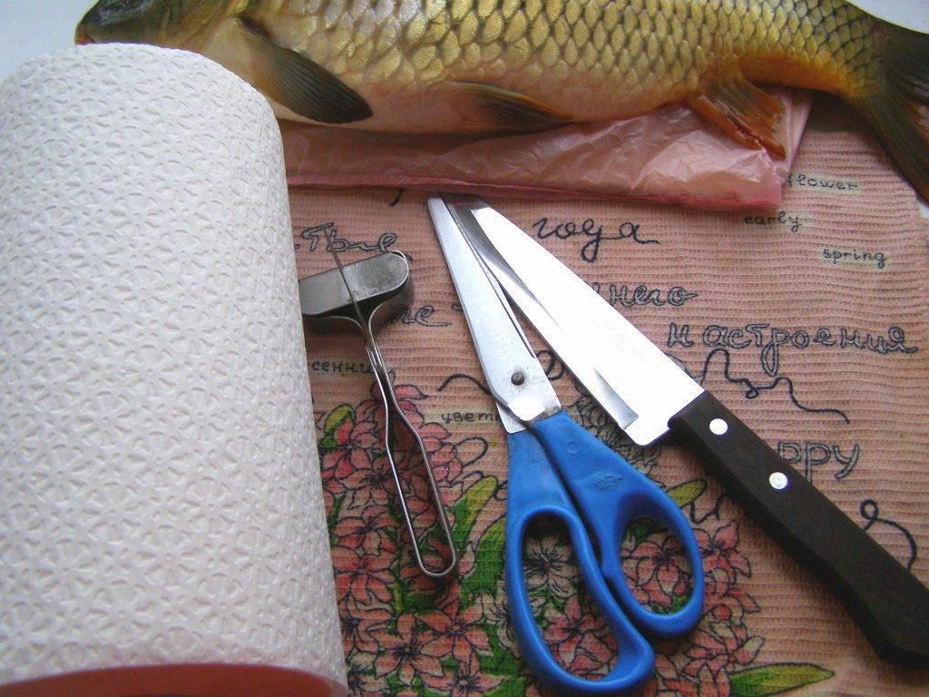 Как чистить свежую рыбу - пошаговая инструкция с фото