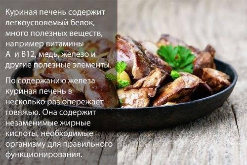 Рыба сом: польза и вред, советы при покупке ценного мяса