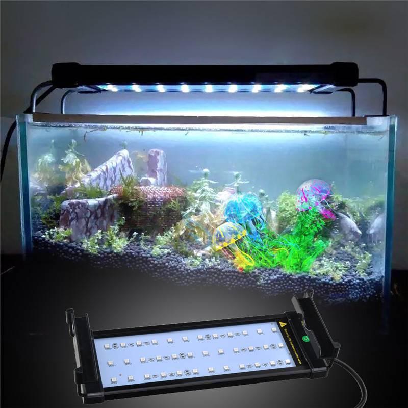 Светодиодная лента для аквариума: какую выбрать для освещения, бывают ли влагозащитные (водонепроницаемые), как рассчитать для аквариума с растениями