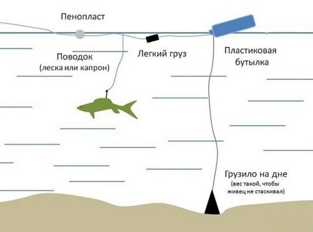 Оснастка для ловли на живца с берега – суперулов – интернет-портал о рыбалке
