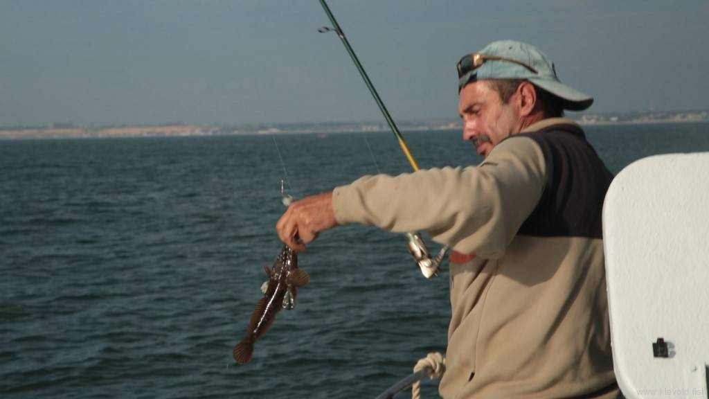 Какую снасть накефаль применяют начерном море