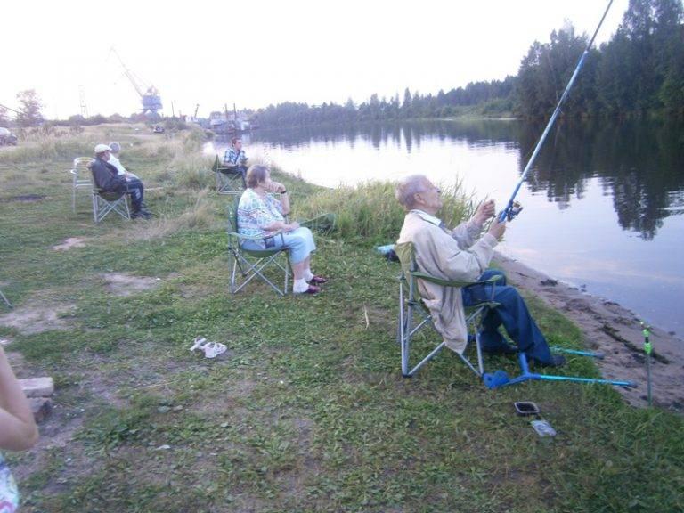 Рыболовные базы в дубне, московская область - отдых с рыбалкой, цены 2020, фото, отзывы