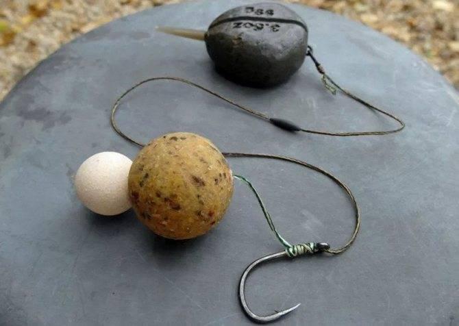 На что ловить сазана: на какие приманки лучше клюет, выбор подходящей наживки