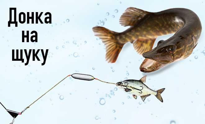 Снасть на щуку: виды, особенности изготовления своими руками и применения на рыбалке, выбор в зависимости от сезона и других условий ловли.
