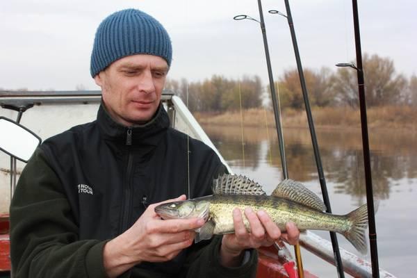 Клинский рыбхоз: правила ловли, отзывы рыбаков, стоимость