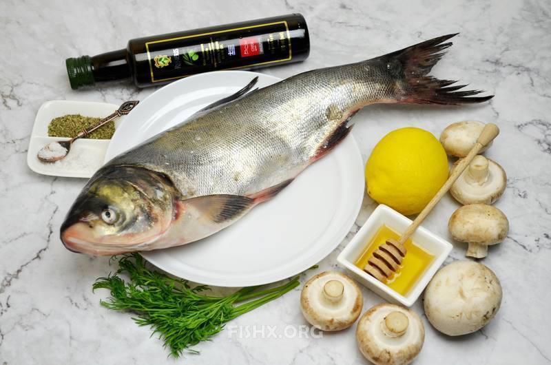 Как приготовить толстолобика - 12 вкусных рецептов