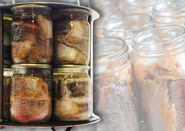 Рыбные консервы в автоклаве в домашних условиях: как делать? домашние рыбные консервы: рыба в томатном соусе, масле, с овощами - автор екатерина данилова - журнал женское мнение
