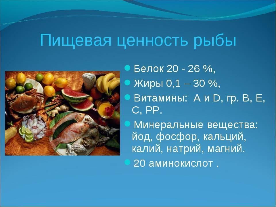 Польза и вред хумуса: калорийность, бжу