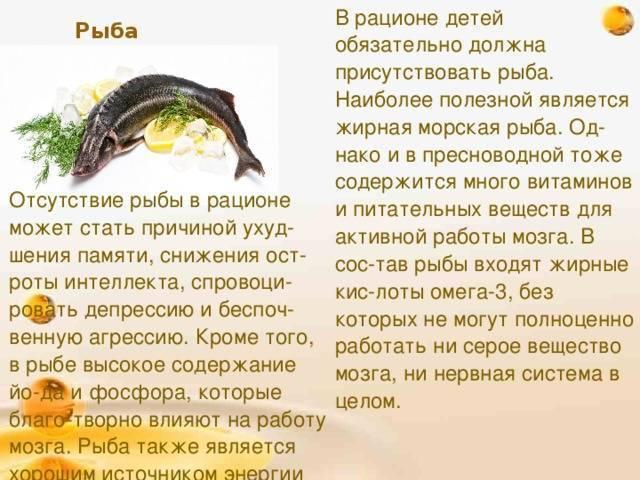Рыба сом — польза и вред для организма | польза и вред