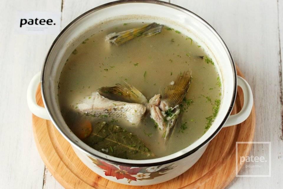 Уха из щуки – почувствуй этот вкус! рецепты наваристой ухи из щуки с овощами, крупами, дымком, водкой, в мультиварке