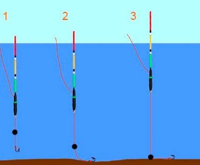 Оснастка удочки для ловли карася: выбор поплавка, удилища, катушки и лески