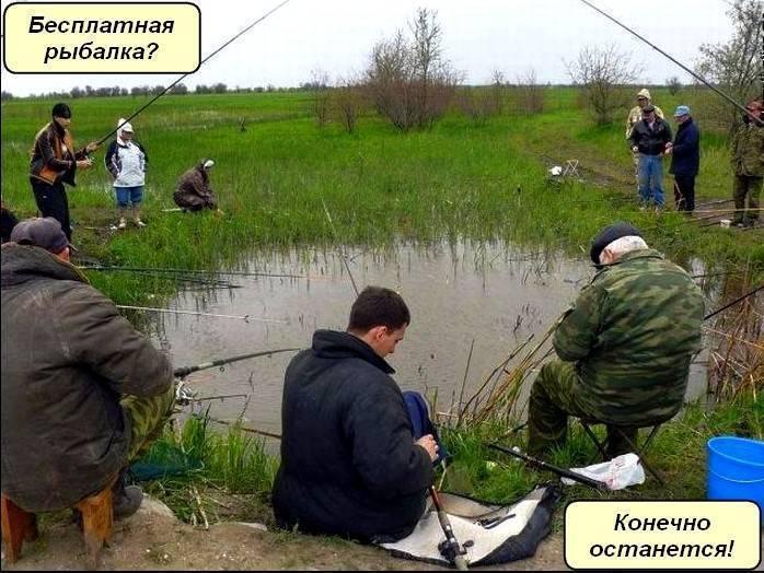 Рыбалка в минске. где половить в городе. форум и отчеты