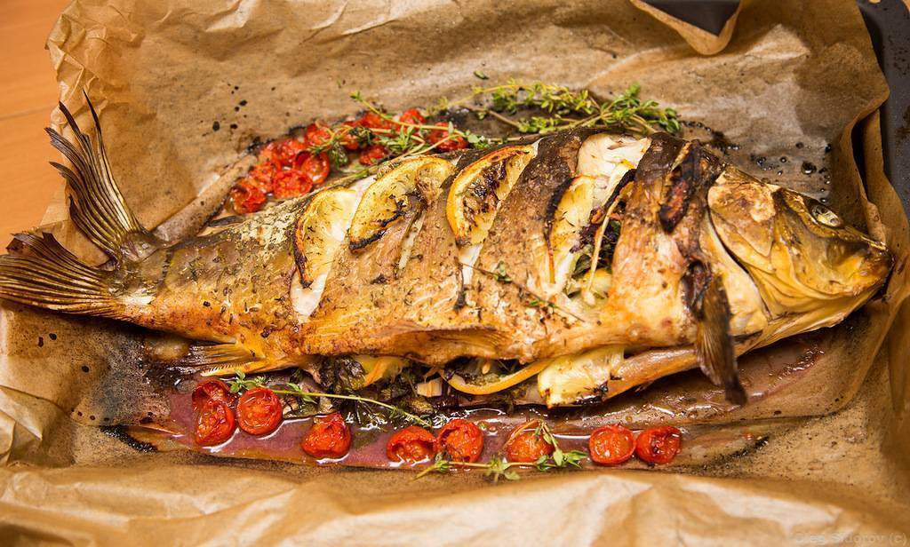 Рецепты сазан в духовке: способы подготовить и вкусно запечь сазана