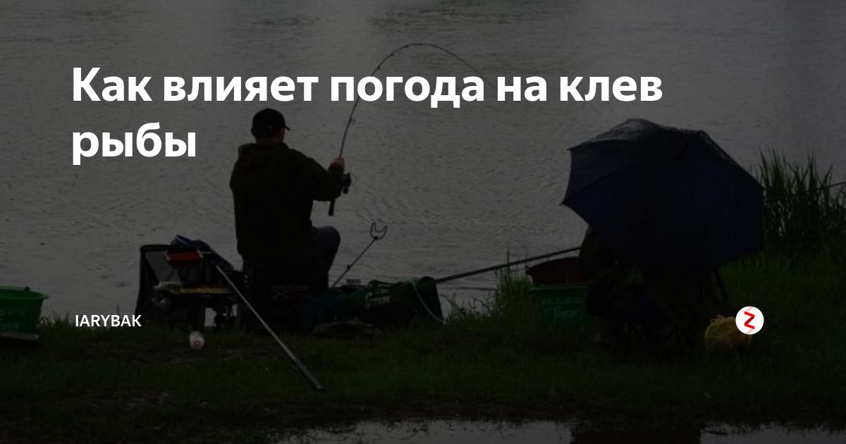 Какая погода лучше для рыбалки