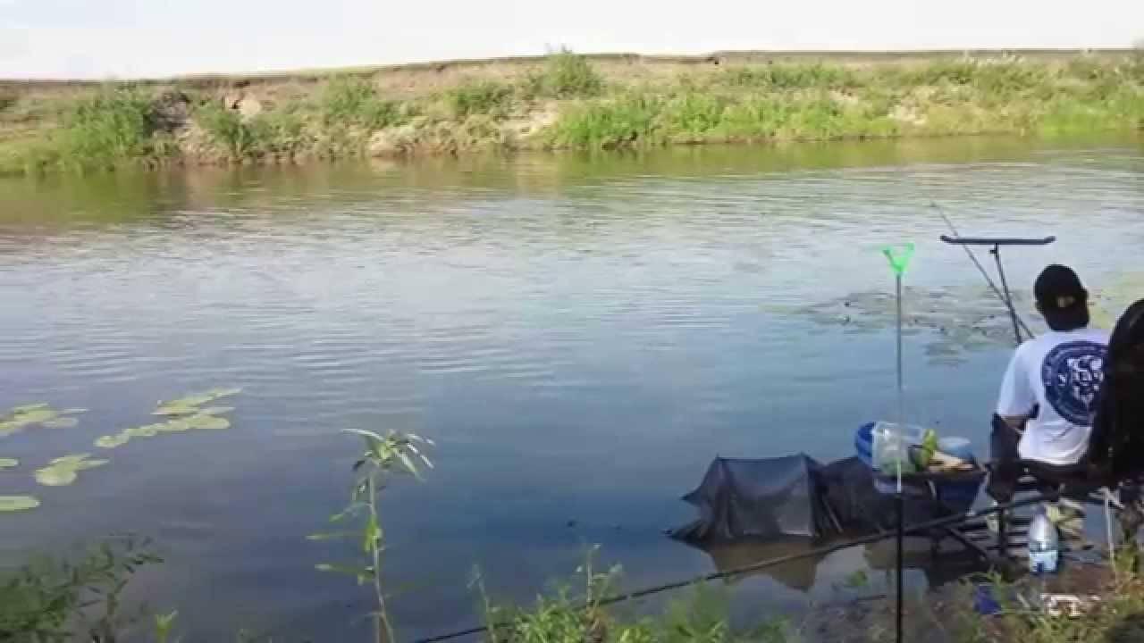 Рыбалка в курганской области: излюбленные места матерых рыболовов