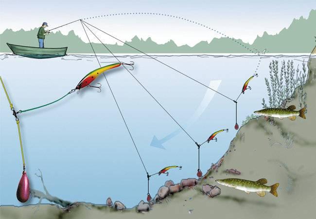 Как собрать спиннинг для начинающих: видео и техника рыбалки