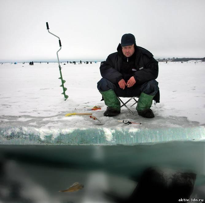 Рыбалка на припяти – лучшее место для ловли рыб в беларуси