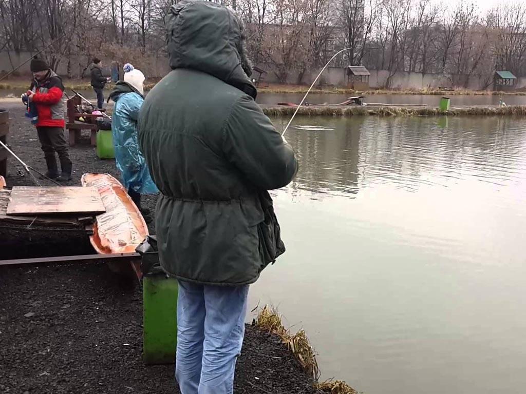 Платная рыбалка в Подмосковье — обзор мест, нормы вылова, цены