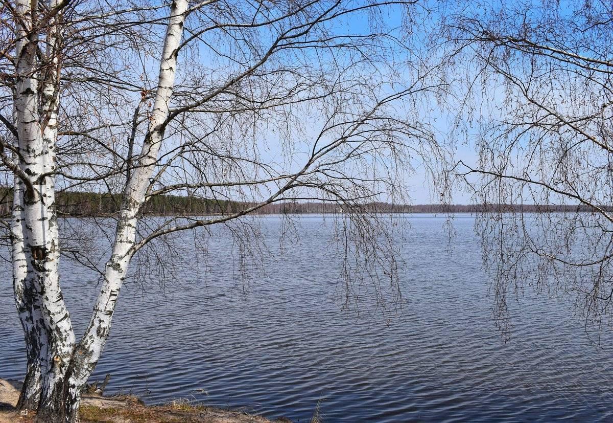 Белое озеро — и отдых и рыбалка